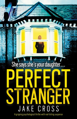 Perfect-Stranger-Kindle